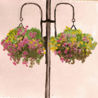 lampost-baskets